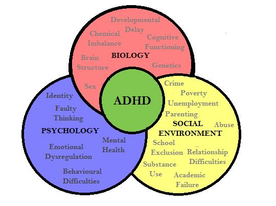 biopsychosocial-approach
